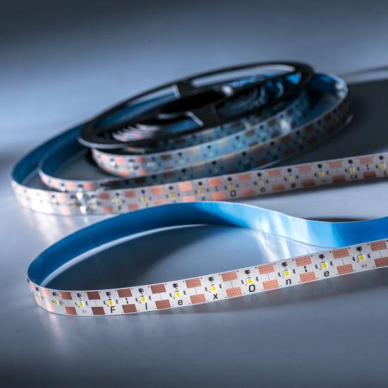 FlexOne 250 Samsung LED Strip cold white 6500K 12875lm 12V 50 LEDs/m 16ft/5m reel (785lm & 9.2W/ft)