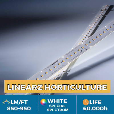 Professional LinearZ LED module Nichia Optisolis, White Solar CRI98 +, Plug & Play Zhaga, 950 lm / ft